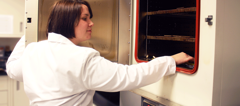Testing Adhesive Bonds for Heat Stress